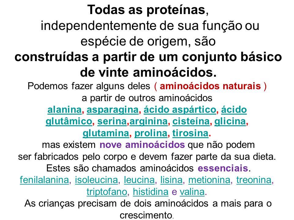 Todas as proteínas, independentemente de sua função ou espécie de origem, são construídas a partir de um conjunto básico de vinte aminoácidos. Podemos