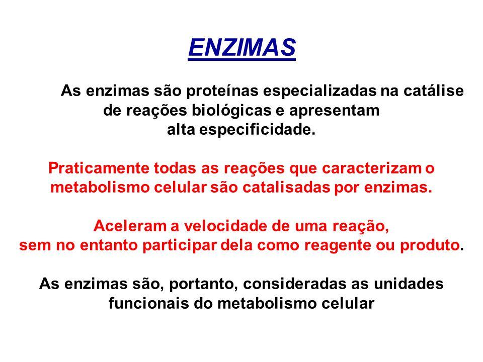 ENZIMAS As enzimas são proteínas especializadas na catálise de reações biológicas e apresentam alta especificidade. Praticamente todas as reações que