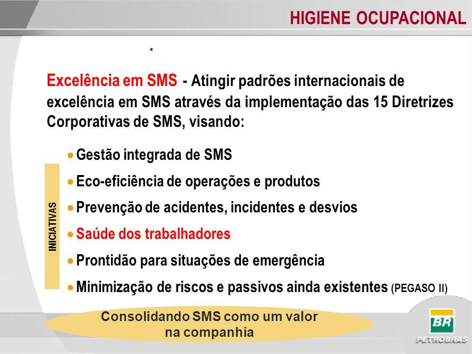 HIGIENE OCUPACIONAL. Excelência em SMS - Atingir padrões internacionais de excelência em SMS através da implementação das 15 Diretrizes Corporativas d