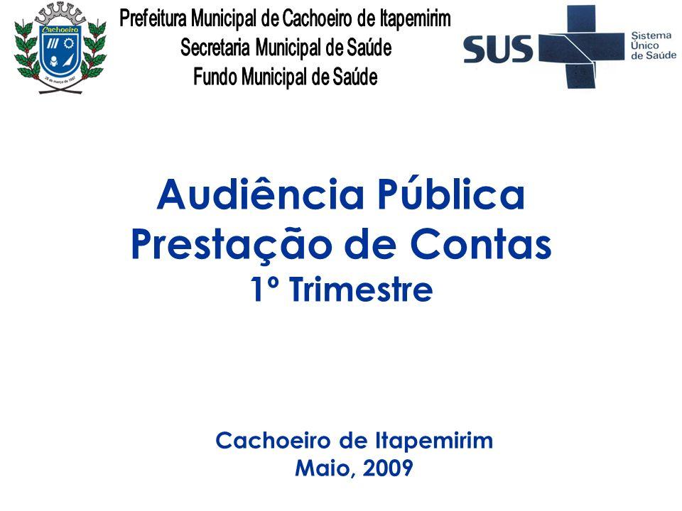 Audiência Pública Rede de Serviços Execução Orçamentária e Financeira Recursos Humanos