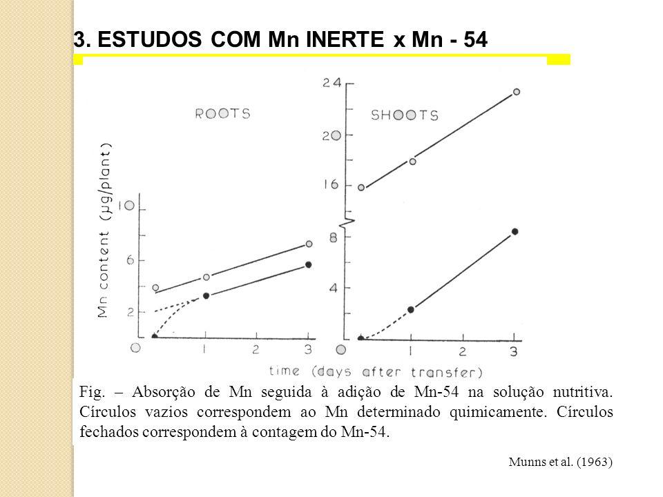 3. ESTUDOS COM Mn INERTE x Mn - 54 Fig. – Absorção de Mn seguida à adição de Mn-54 na solução nutritiva. Círculos vazios correspondem ao Mn determinad