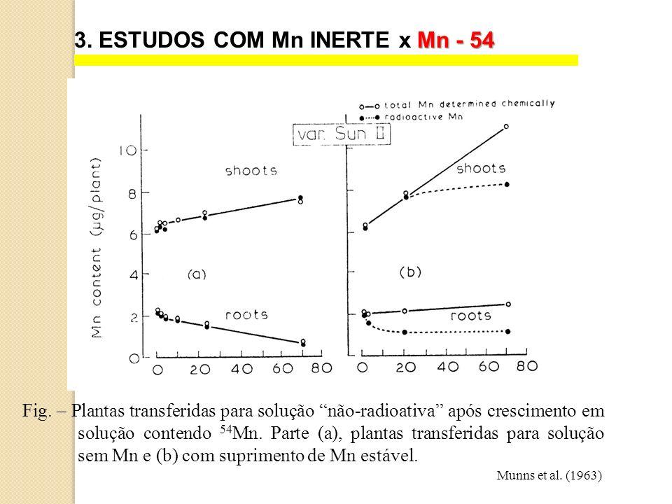 Fig. – Plantas transferidas para solução não-radioativa após crescimento em solução contendo 54 Mn. Parte (a), plantas transferidas para solução sem M