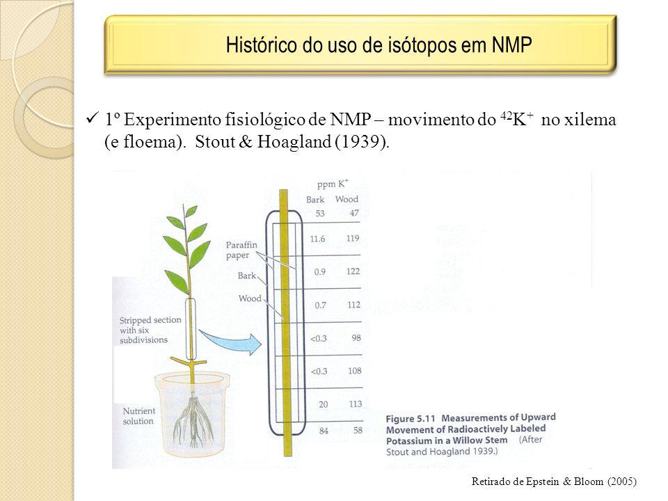 Histórico do uso de isótopos em NMP 1º Experimento fisiológico de NMP – movimento do 42 K + no xilema (e floema). Stout & Hoagland (1939). Retirado de