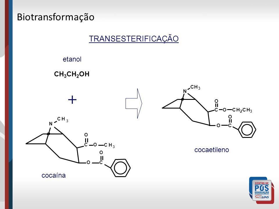 TRANSESTERIFICAÇÃO C O N C O CH 3 O CH 2 CH 3 O C O N C O CH 3 O CH 3 O + CH 3 CH 2 OH cocaína cocaetileno etanol Biotransformação
