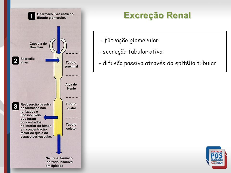 - filtração glomerular - secreção tubular ativa - difusão passiva através do epitélio tubular Excreção Renal