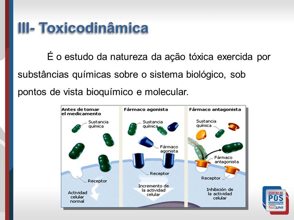 III- Toxicodinâmica É o estudo da natureza da ação tóxica exercida por substâncias químicas sobre o sistema biológico, sob pontos de vista bioquímico e molecular.