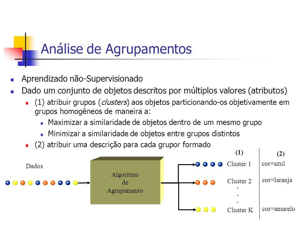 Análise de Agrupamentos Aprendizado não-Supervisionado Dado um conjunto de objetos descritos por múltiplos valores (atributos) (1) atribuir grupos (clusters) aos objetos particionando-os objetivamente em grupos homogêneos de maneira a: Maximizar a similaridade de objetos dentro de um mesmo grupo Minimizar a similaridade de objetos entre grupos distintos (2) atribuir uma descrição para cada grupor formado Cluster 1 Cluster 2 Cluster K......