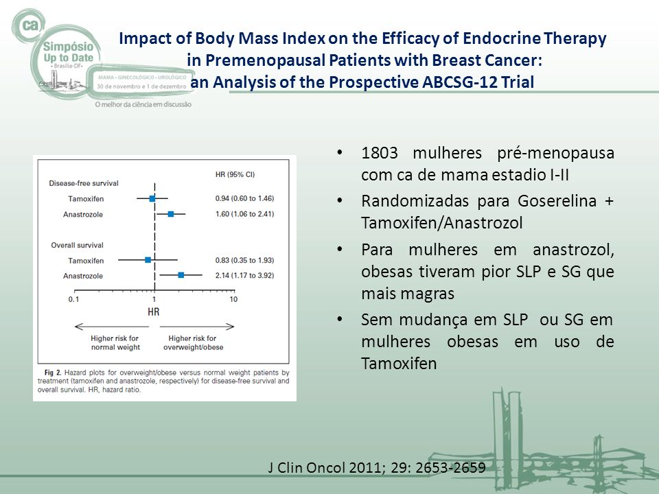 Impact of Body Mass Index on the Efficacy of Endocrine Therapy in Premenopausal Patients with Breast Cancer: an Analysis of the Prospective ABCSG-12 T