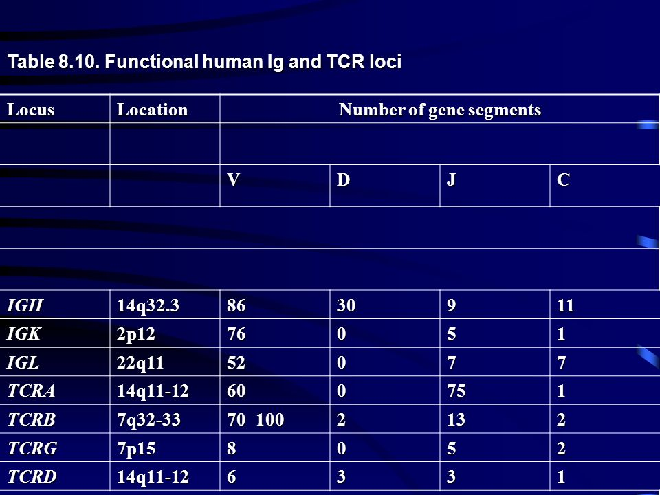 Table 8.10. Functional human Ig and TCR loci LocusLocation Number of gene segments VDJC IGH14q32.38630911 IGK2p1276051 IGL22q1152077 TCRA14q11-1260075