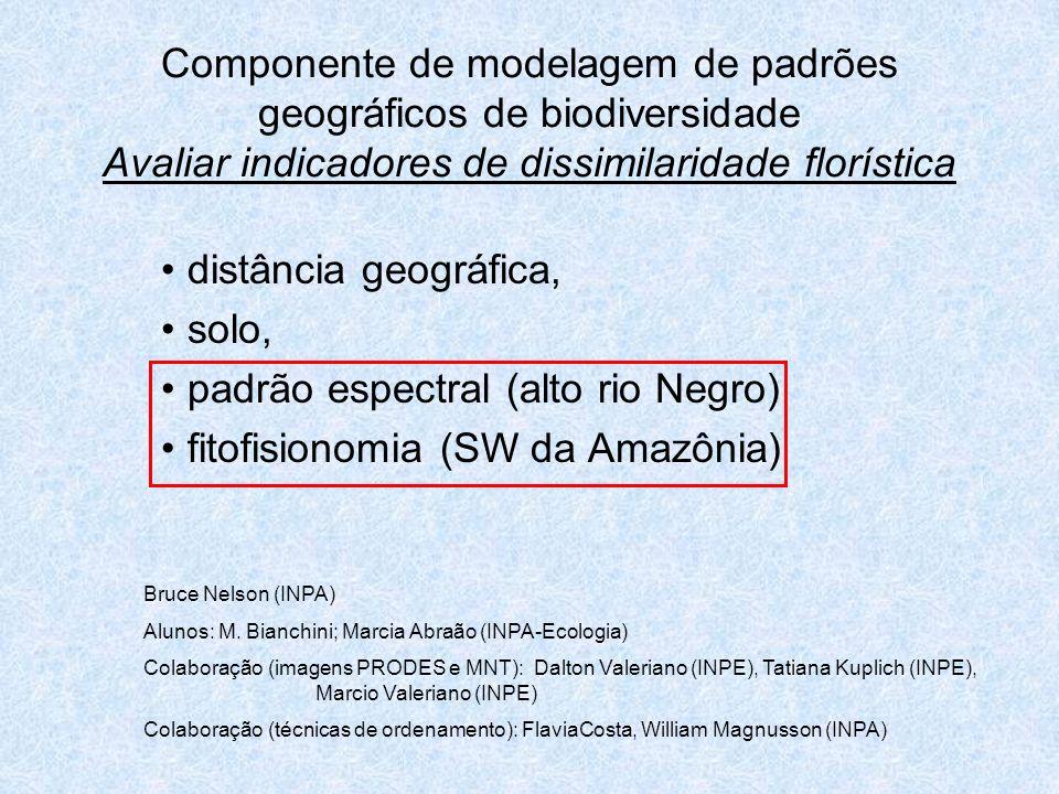 Componente de modelagem de padrões geográficos de biodiversidade Avaliar indicadores de dissimilaridade florística distância geográfica, solo, padrão espectral (alto rio Negro) fitofisionomia (SW da Amazônia) Bruce Nelson (INPA) Alunos: M.