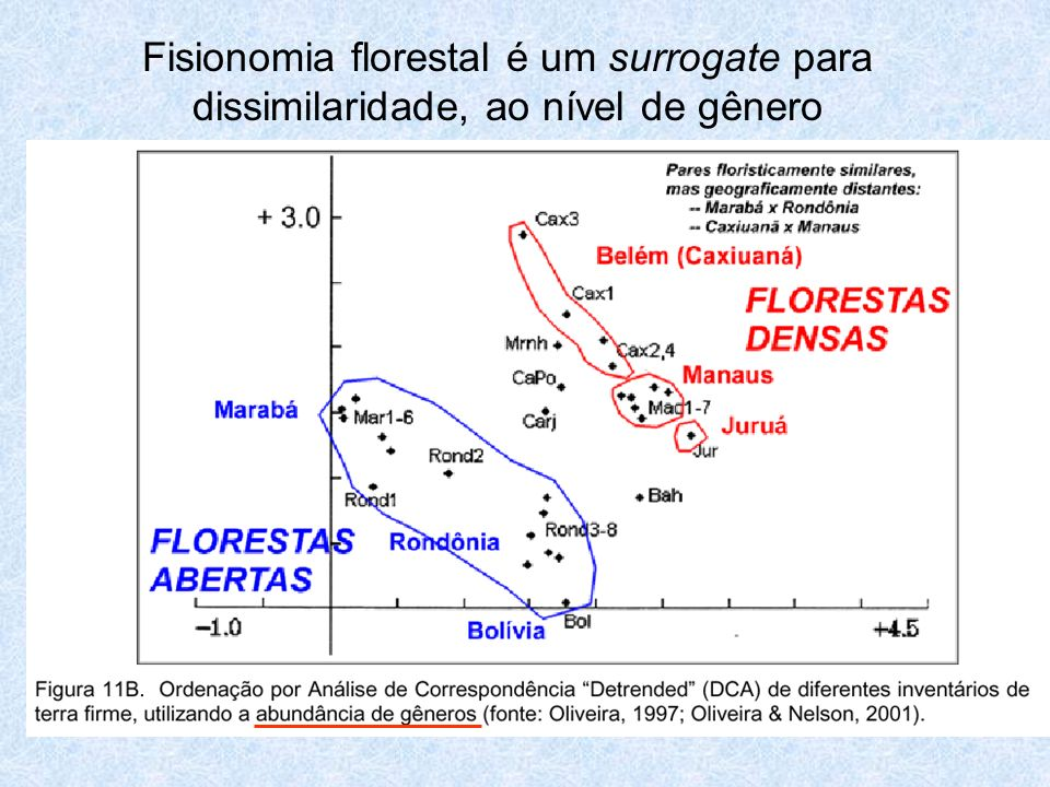 Fisionomia florestal é um surrogate para dissimilaridade, ao nível de gênero