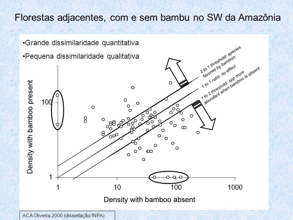 Florestas adjacentes, com e sem bambu no SW da Amazônia Grande dissimilaridade quantitativa Pequena dissimilaridade qualitativa ACA Oliveira 2000 (dis