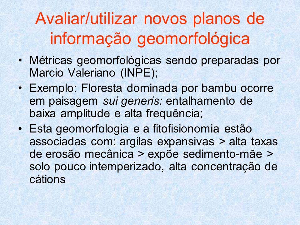 Avaliar/utilizar novos planos de informação geomorfológica Métricas geomorfológicas sendo preparadas por Marcio Valeriano (INPE); Exemplo: Floresta do
