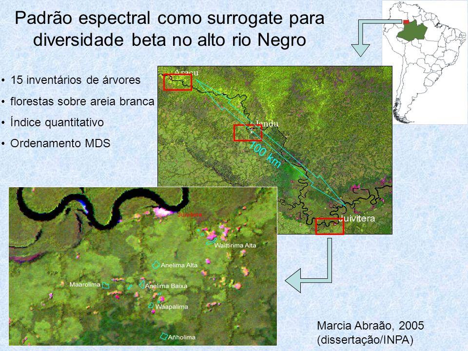 Padrão espectral como surrogate para diversidade beta no alto rio Negro 100 km 15 inventários de árvores florestas sobre areia branca Índice quantitativo Ordenamento MDS Marcia Abraão, 2005 (dissertação/INPA)