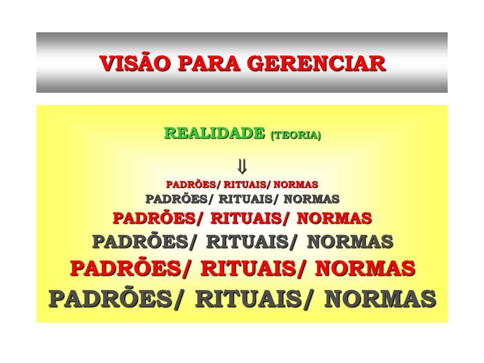 VISÃO PARA GERENCIAR REALIDADE (TEORIA) PADRÕES/ RITUAIS/ NORMAS