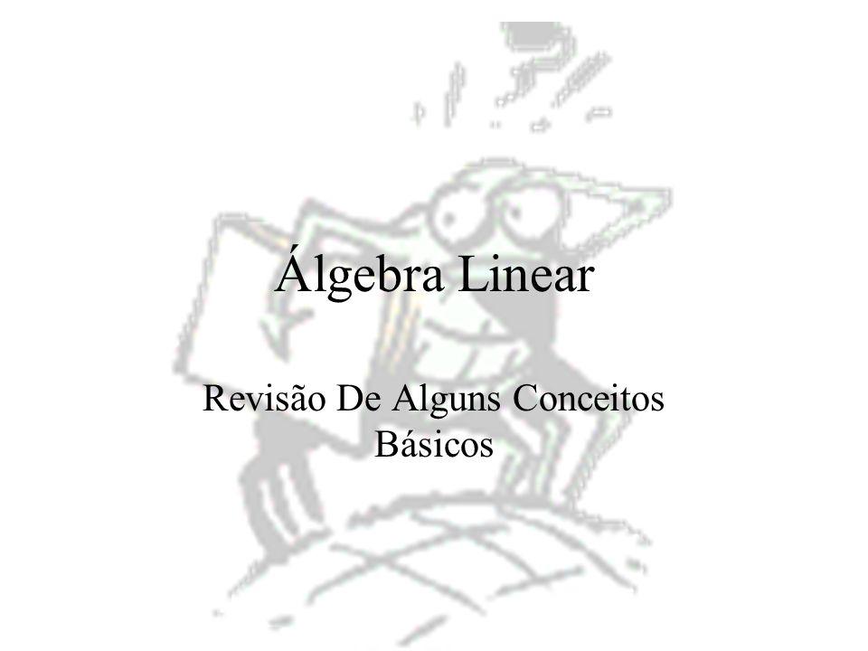 4 Conceitos Escalar Vector Matriz –Igualdade de matrizes –Matriz transposta –Matriz quadrada –Matriz diagonal –Matriz escalar –Matriz identidade –Matriz simétrica –Matriz nula –Submatriz