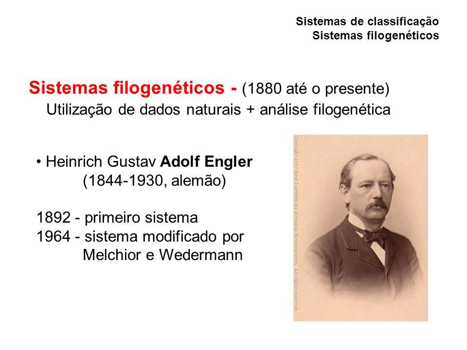 Sistemas de classificação Sistemas filogenéticos Sistemas filogenéticos - (1880 até o presente) Utilização de dados naturais + análise filogenética He
