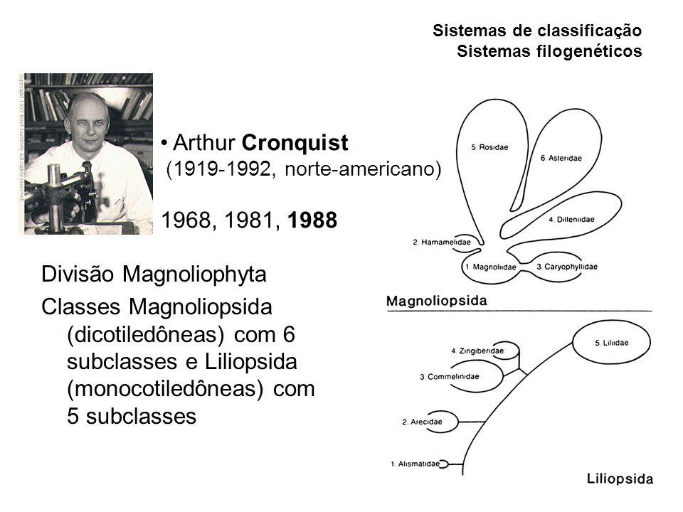 Divisão Magnoliophyta Classes Magnoliopsida (dicotiledôneas) com 6 subclasses e Liliopsida (monocotiledôneas) com 5 subclasses Sistemas de classificaç