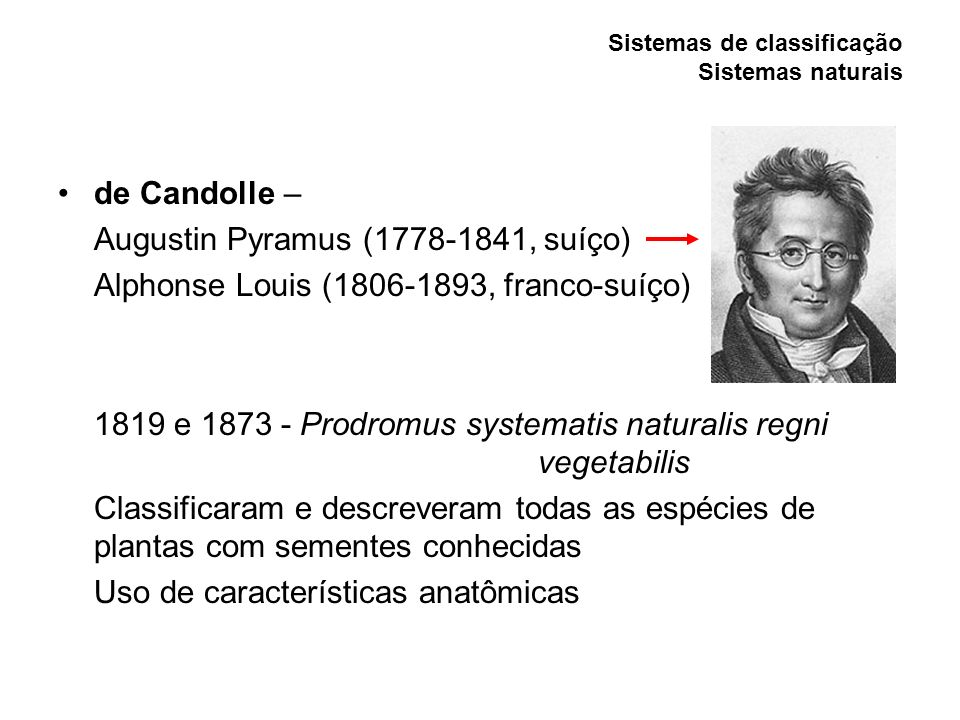 Sistemas de classificação Sistemas naturais de Candolle – Augustin Pyramus (1778-1841, suíço) Alphonse Louis (1806-1893, franco-suíço) 1819 e 1873 - P