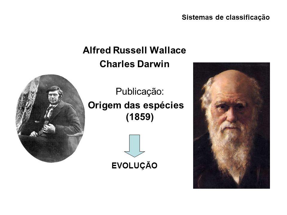 Sistemas de classificação Alfred Russell Wallace Charles Darwin Publicação: Origem das espécies (1859) EVOLUÇÃO