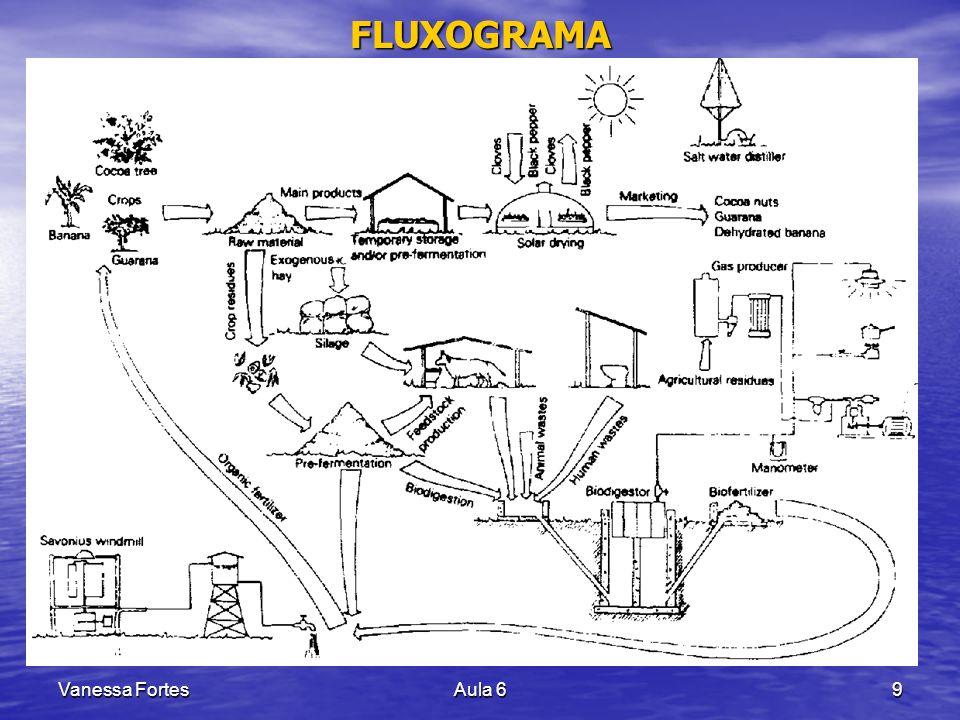 Vanessa FortesAula 69 FLUXOGRAMA