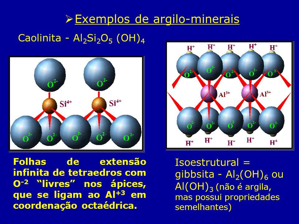 Exemplos de argilo-minerais Caolinita - Al 2 Si 2 O 5 (OH) 4 Isoestrutural = gibbsita - Al 2 (OH) 6 ou Al(OH) 3 (não é argila, mas possui propriedades