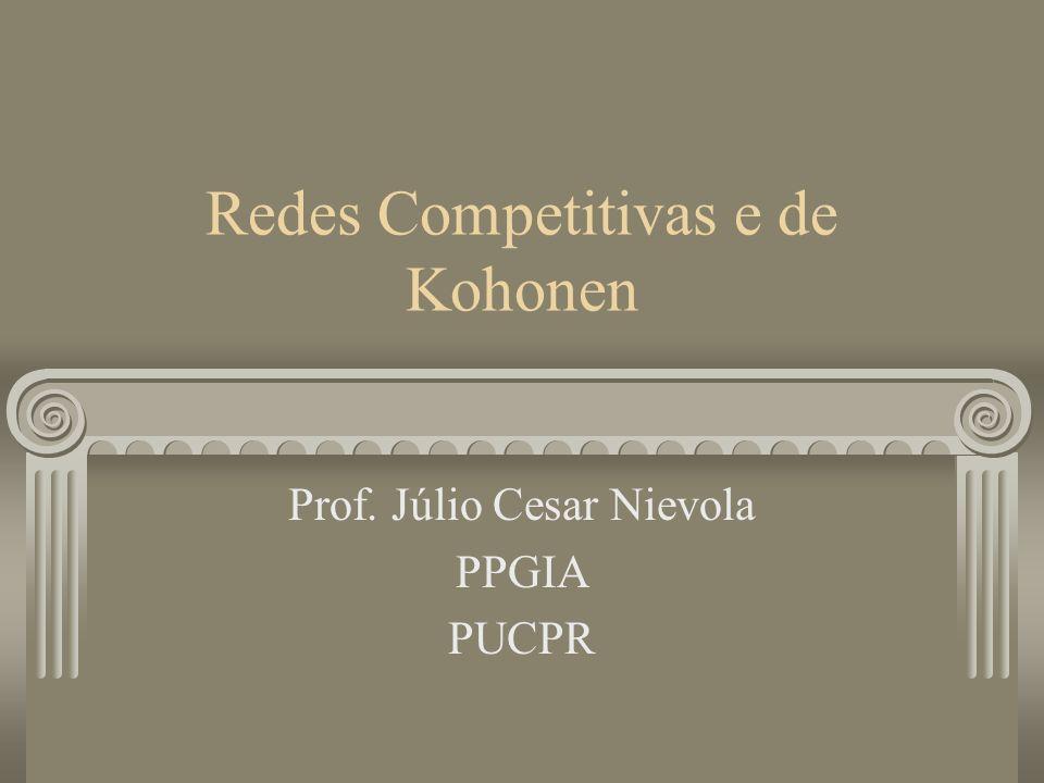 Redes Competitivas e de Kohonen Prof. Júlio Cesar Nievola PPGIA PUCPR
