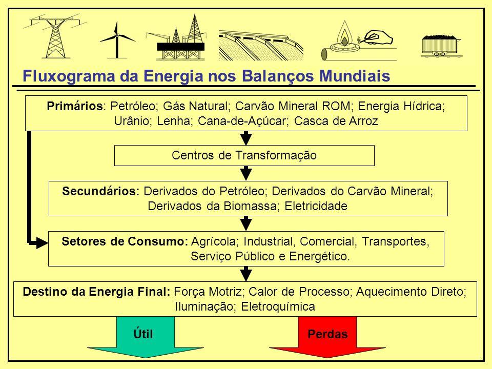 Primários: Petróleo; Gás Natural; Carvão Mineral ROM; Energia Hídrica; Urânio; Lenha; Cana-de-Açúcar; Casca de Arroz Secundários: Derivados do Petróleo; Derivados do Carvão Mineral; Derivados da Biomassa; Eletricidade Destino da Energia Final: Força Motriz; Calor de Processo; Aquecimento Direto; Iluminação; Eletroquímica Centros de Transformação Setores de Consumo: Agrícola; Industrial, Comercial, Transportes, Serviço Público e Energético.