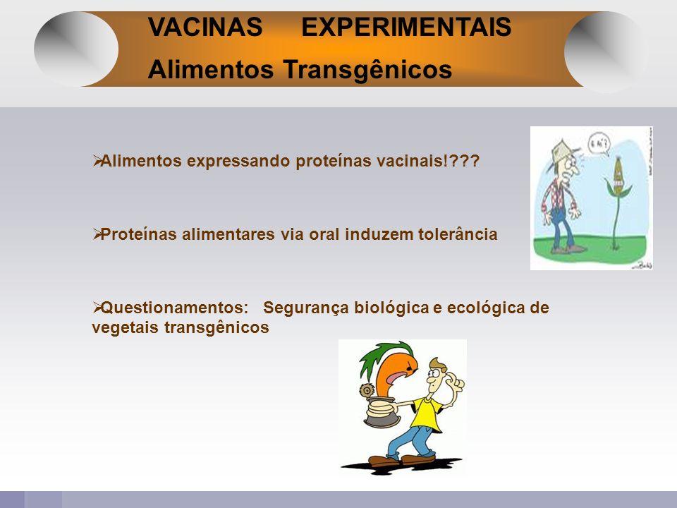 VACINAS EXPERIMENTAIS Alimentos Transgênicos Alimentos expressando proteínas vacinais!??? Proteínas alimentares via oral induzem tolerância Questionam