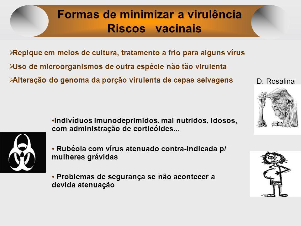 Formas de minimizar a virulência Riscos vacinais Repique em meios de cultura, tratamento a frio para alguns vírus Uso de microorganismos de outra espé