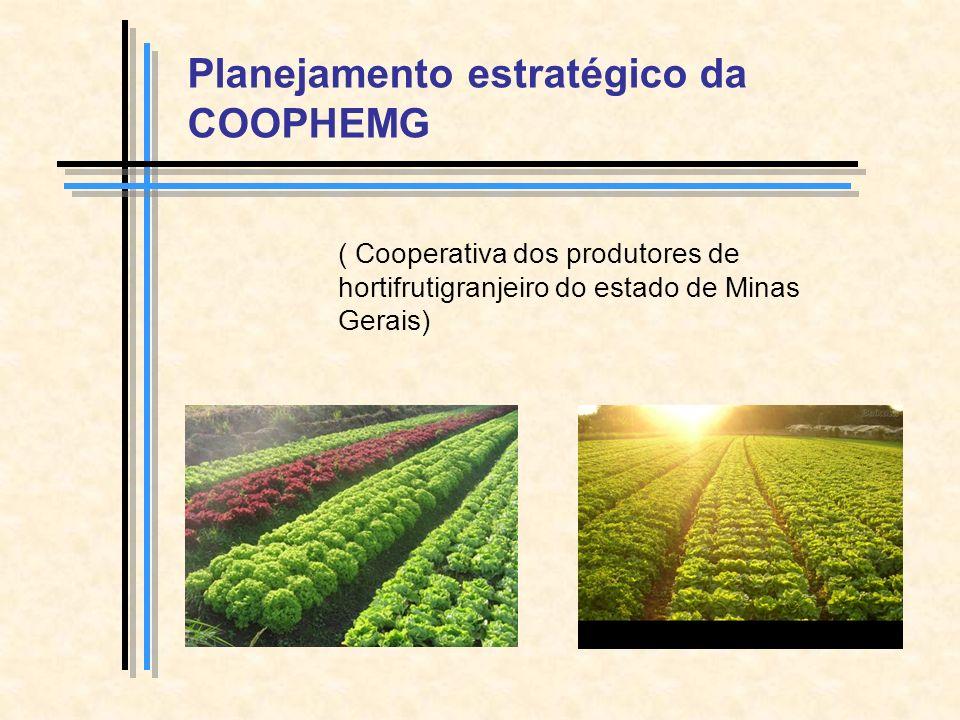 Planejamento estratégico da COOPHEMG ( Cooperativa dos produtores de hortifrutigranjeiro do estado de Minas Gerais)