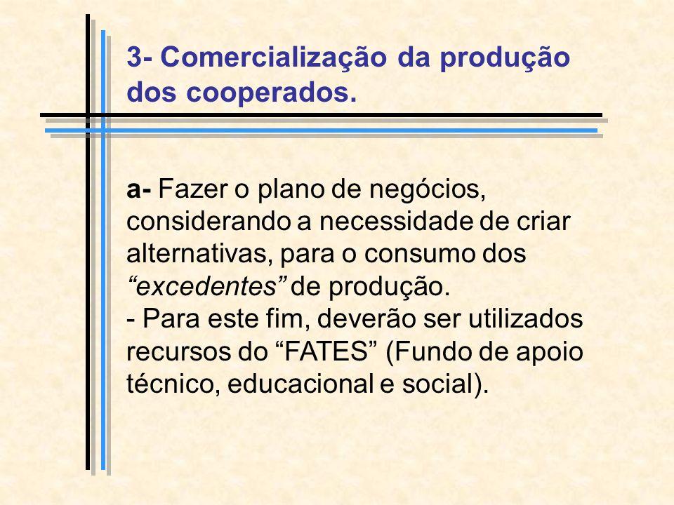 a- Fazer o plano de negócios, considerando a necessidade de criar alternativas, para o consumo dos excedentes de produção.
