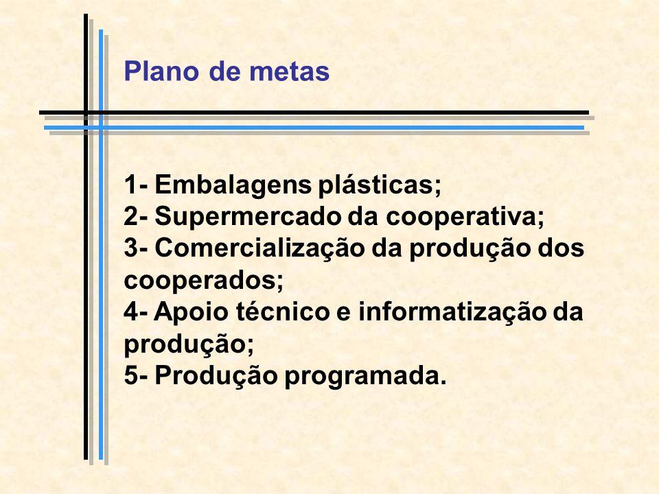 Plano de metas 1- Embalagens plásticas; 2- Supermercado da cooperativa; 3- Comercialização da produção dos cooperados; 4- Apoio técnico e informatização da produção; 5- Produção programada.