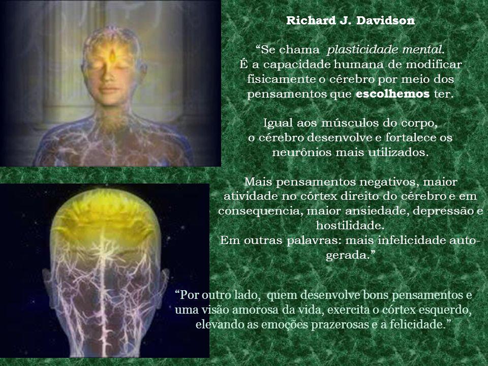 Richard J. Davidson Se chama plasticidade mental. É a capacidade humana de modificar fisicamente o cérebro por meio dos pensamentos que escolhemos ter