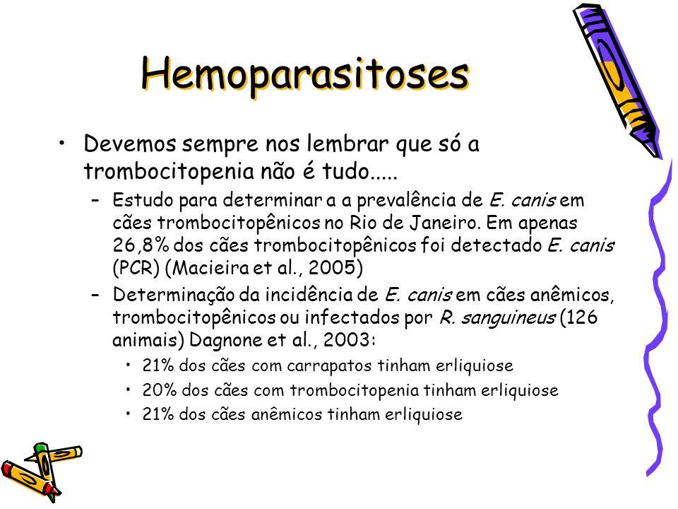 Hemoparasitoses Devemos sempre nos lembrar que só a trombocitopenia não é tudo..... –Estudo para determinar a a prevalência de E. canis em cães trombo