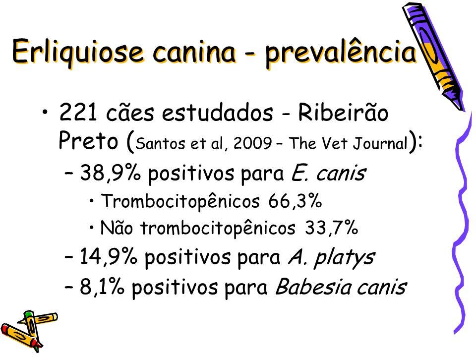 Erliquiose canina - prevalência 221 cães estudados - Ribeirão Preto ( Santos et al, 2009 – The Vet Journal ): –38,9% positivos para E. canis Trombocit