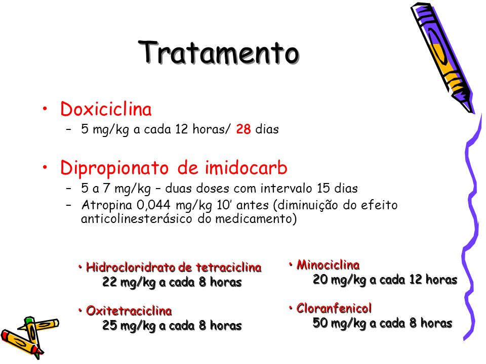 Tratamento Doxiciclina –5 mg/kg a cada 12 horas/ 28 dias Dipropionato de imidocarb –5 a 7 mg/kg – duas doses com intervalo 15 dias –Atropina 0,044 mg/
