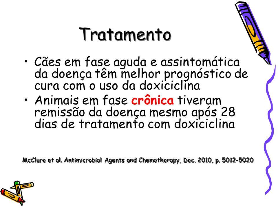 Tratamento Cães em fase aguda e assintomática da doença têm melhor prognóstico de cura com o uso da doxiciclina Animais em fase crônica tiveram remiss