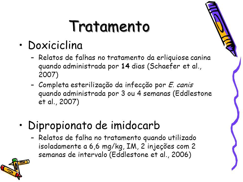 Tratamento Doxiciclina –Relatos de falhas no tratamento da erliquiose canina quando administrada por 14 dias (Schaefer et al., 2007) –Completa esteril
