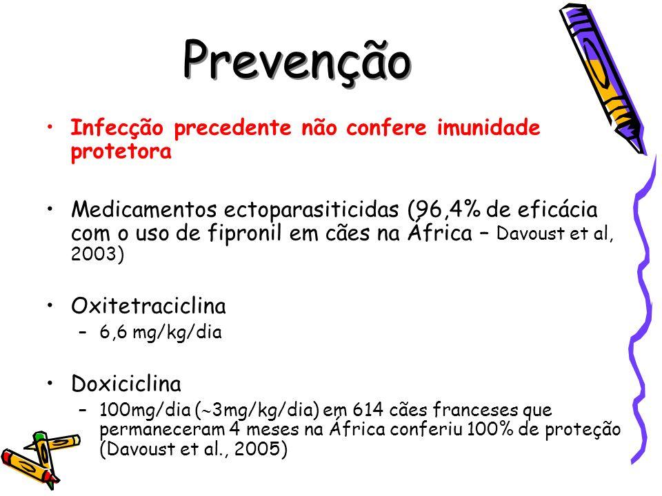 Prevenção Infecção precedente não confere imunidade protetora Medicamentos ectoparasiticidas (96,4% de eficácia com o uso de fipronil em cães na Áfric