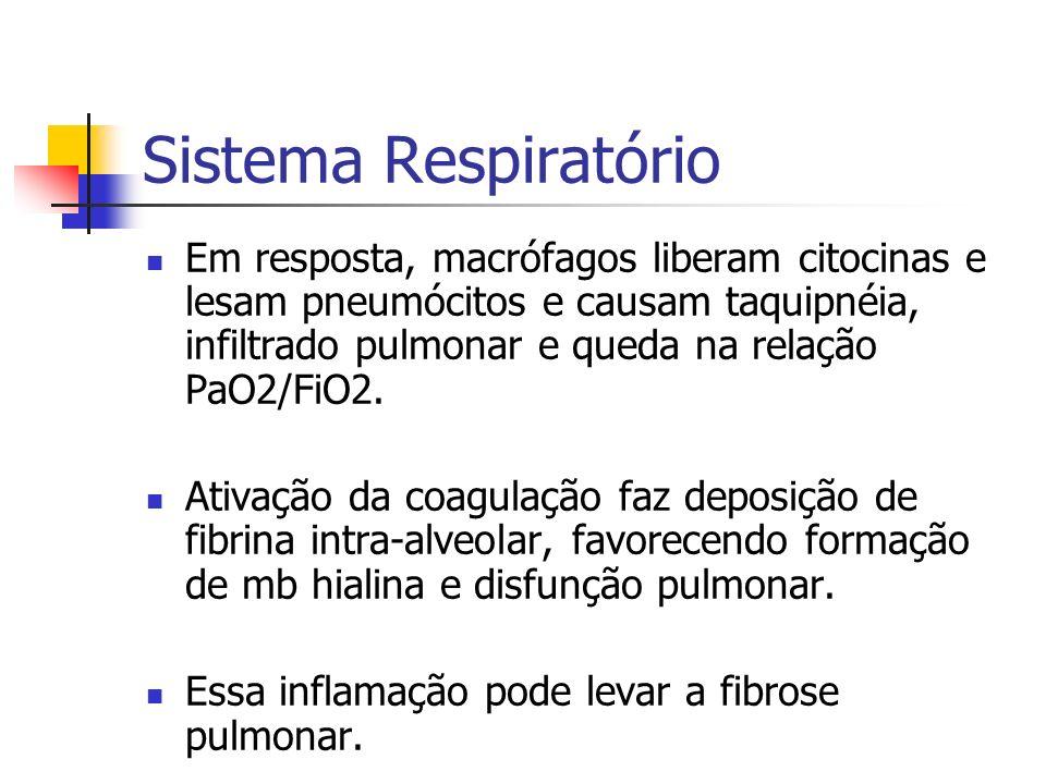 Sistema Respiratório Em resposta, macrófagos liberam citocinas e lesam pneumócitos e causam taquipnéia, infiltrado pulmonar e queda na relação PaO2/Fi