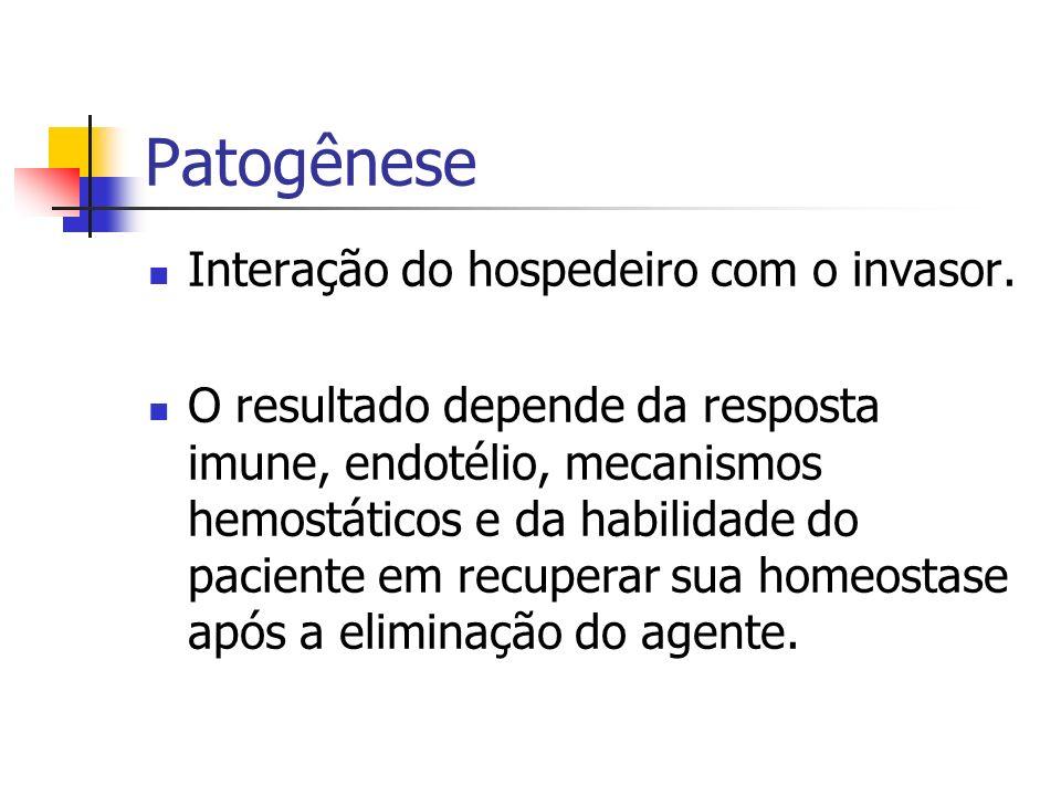 Patogênese Interação do hospedeiro com o invasor. O resultado depende da resposta imune, endotélio, mecanismos hemostáticos e da habilidade do pacient