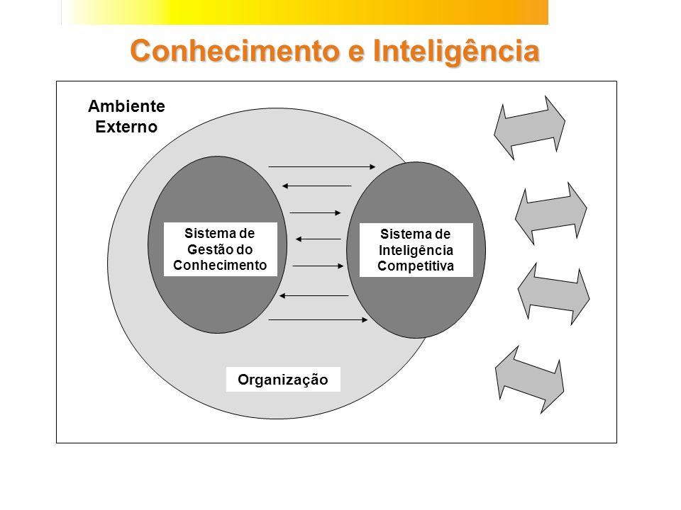 Ambiente Externo Conhecimento e Inteligência Sistema de Gestão do Conhecimento Sistema de Inteligência Competitiva Organização