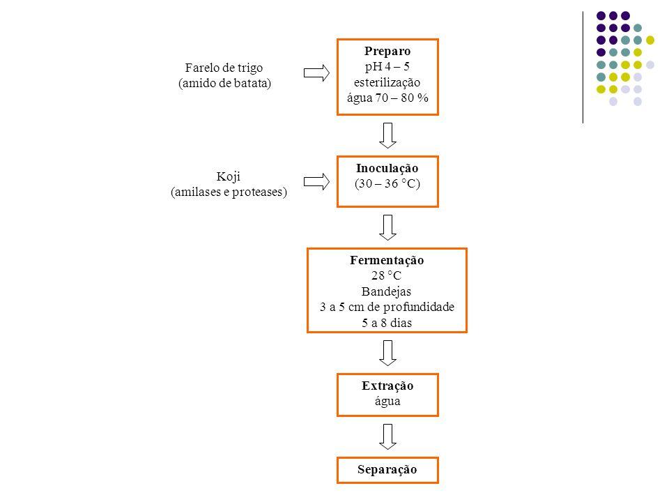 Preparo pH 4 – 5 esterilização água 70 – 80 % Farelo de trigo (amido de batata) Inoculação (30 – 36 C) Koji (amilases e proteases) Fermentação 28 C Ba