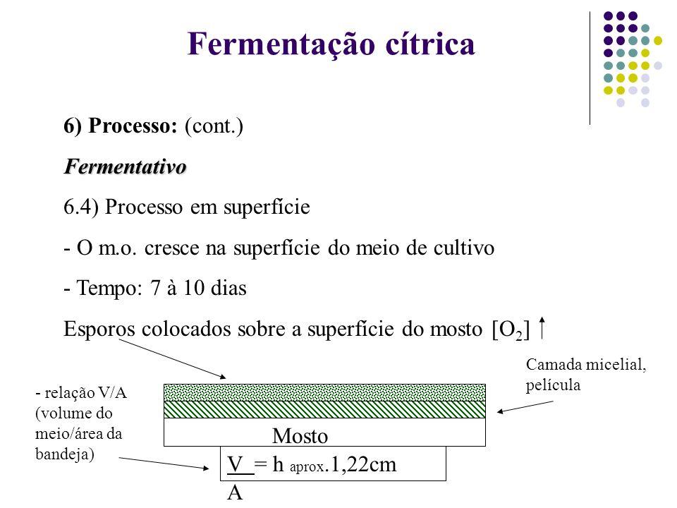 Fermentação cítrica 6) Processo: (cont.)Fermentativo 6.4) Processo em superfície - O m.o. cresce na superfície do meio de cultivo - Tempo: 7 à 10 dias