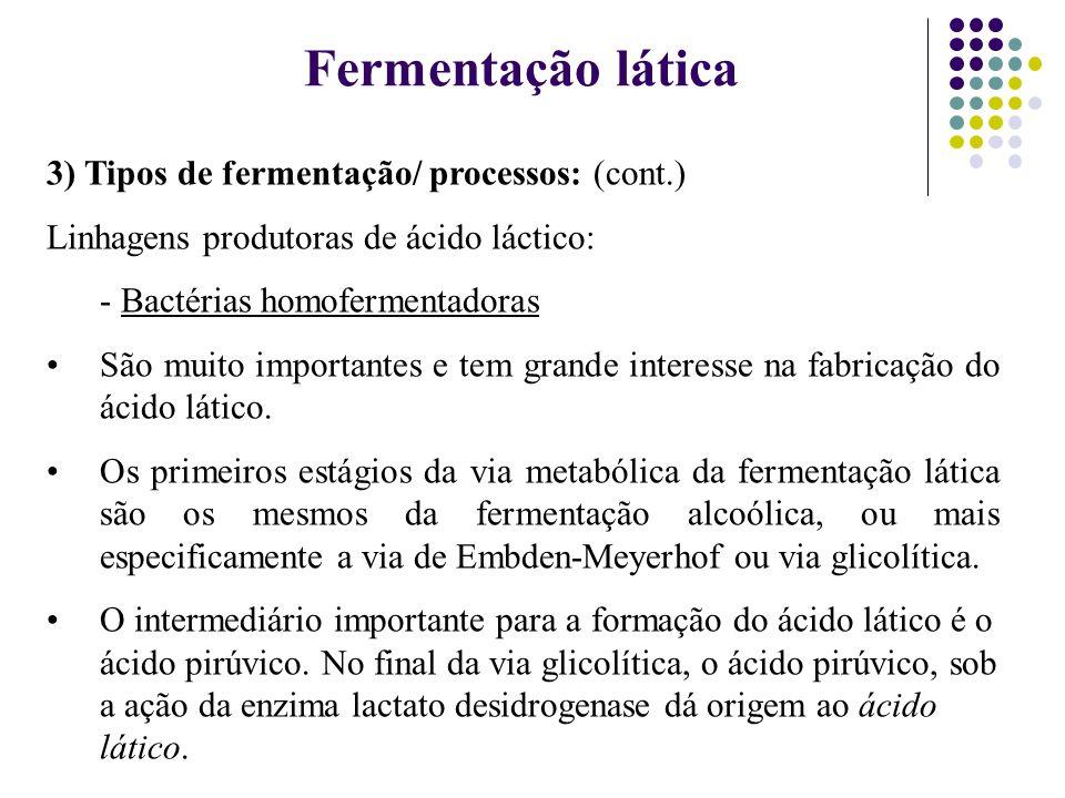 3) Tipos de fermentação/ processos: (cont.) Linhagens produtoras de ácido láctico: - Bactérias homofermentadoras São muito importantes e tem grande in