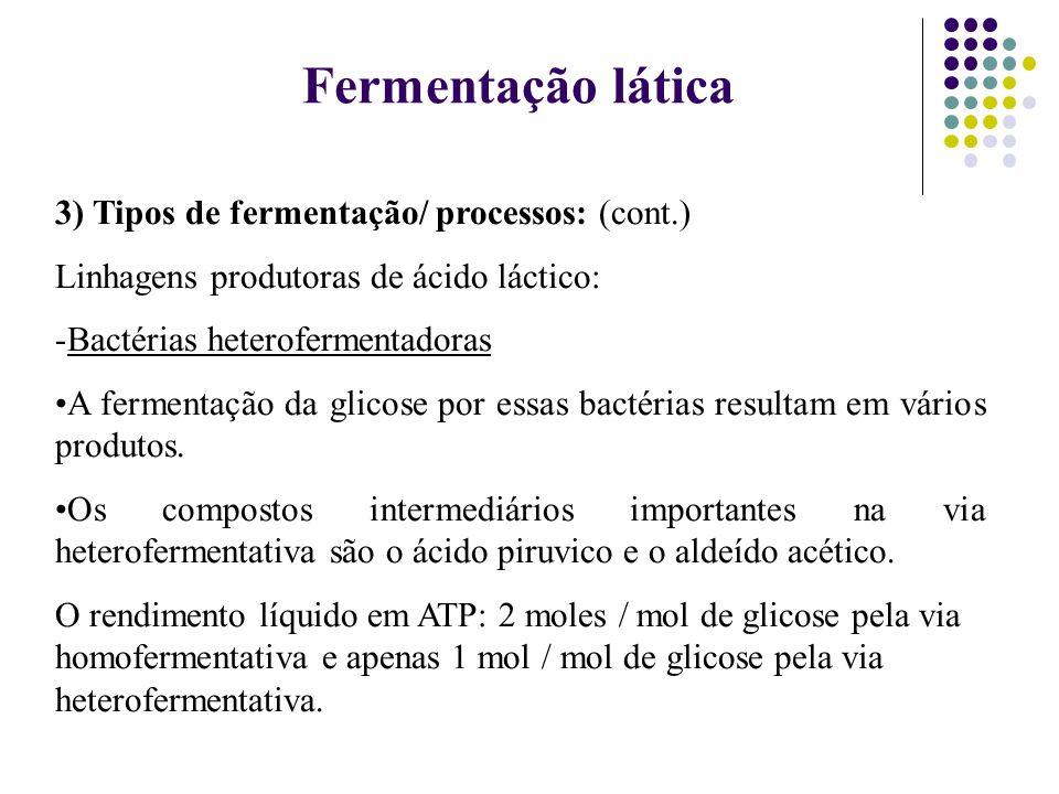 3) Tipos de fermentação/ processos: (cont.) Linhagens produtoras de ácido láctico: -Bactérias heterofermentadoras A fermentação da glicose por essas b