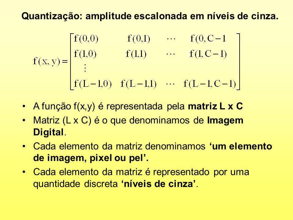 A função f(x,y) é representada pela matriz L x C Matriz (L x C) é o que denominamos de Imagem Digital. Cada elemento da matriz denominamos um elemento