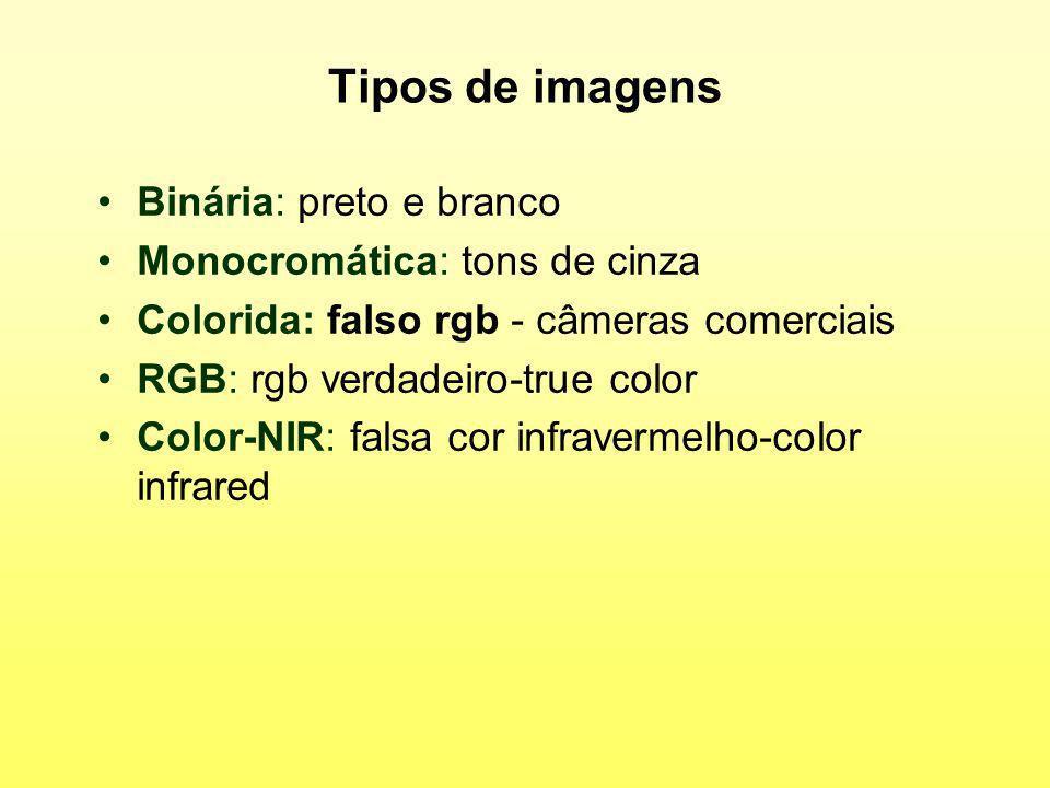Tipos de imagens Binária: preto e branco Monocromática: tons de cinza Colorida: falso rgb - câmeras comerciais RGB: rgb verdadeiro-true color Color-NI