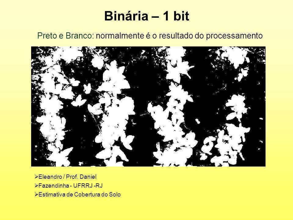 Binária – 1 bit Eleandro / Prof. Daniel Fazendinha - UFRRJ -RJ Estimativa de Cobertura do Solo Preto e Branco: normalmente é o resultado do processame